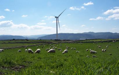 Gestione Sostenibile di Ecosistemi Urbani Mediterranei